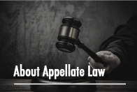 Stephen N. Perziosi - New York About Appellate Law